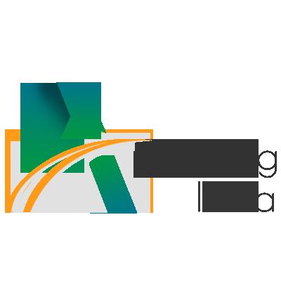 Digital Marketing StudioGenix Case Study - Appealing India